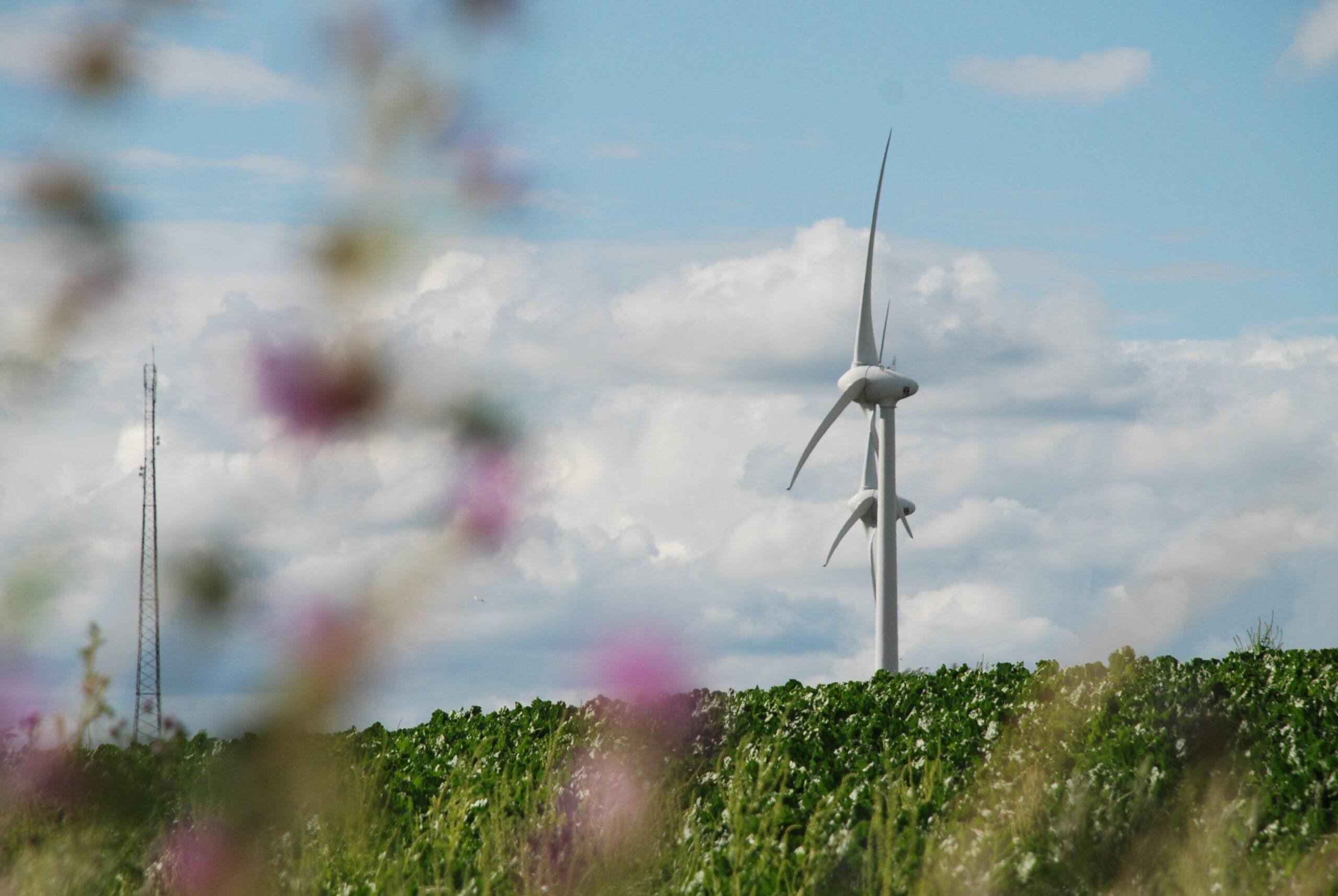 Vindkraftverk på en åker