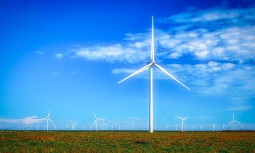 Stor vindkraftspark